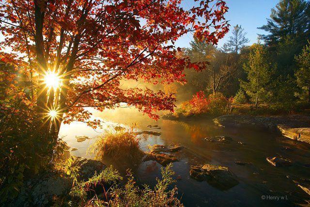 paisaje otoño...