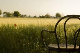 silla en espera...